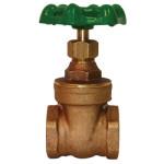 gate valve ips